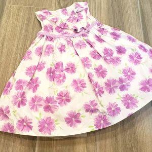 Gymboree dressed up 3-6mo purple and white dress